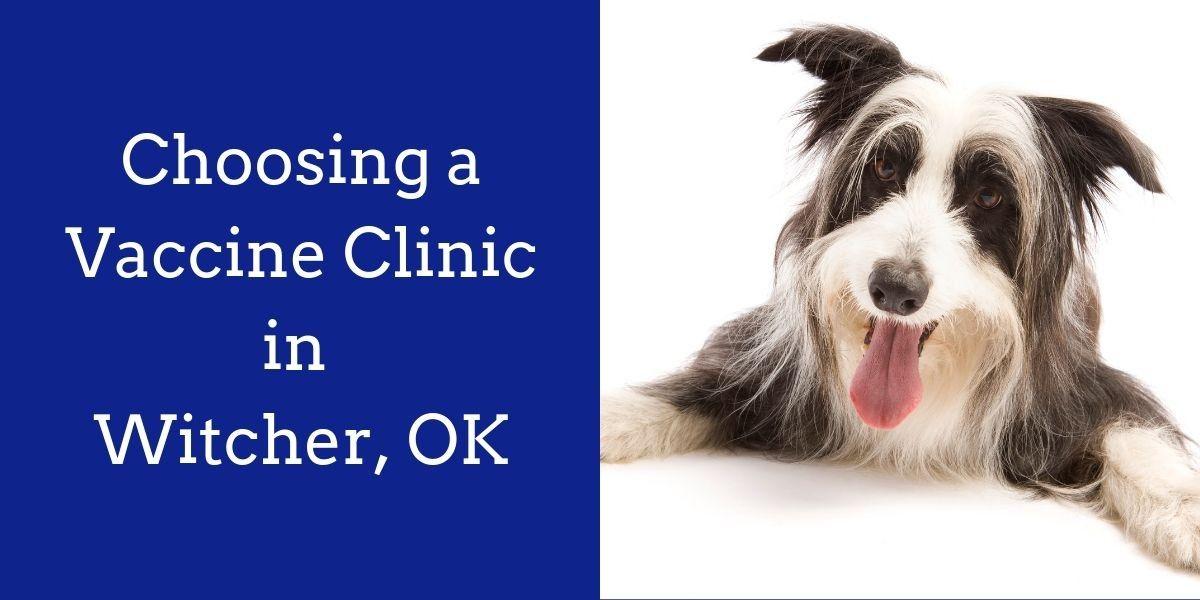 Choosing_a_Vaccine_Clinic_in_Witcher_OK